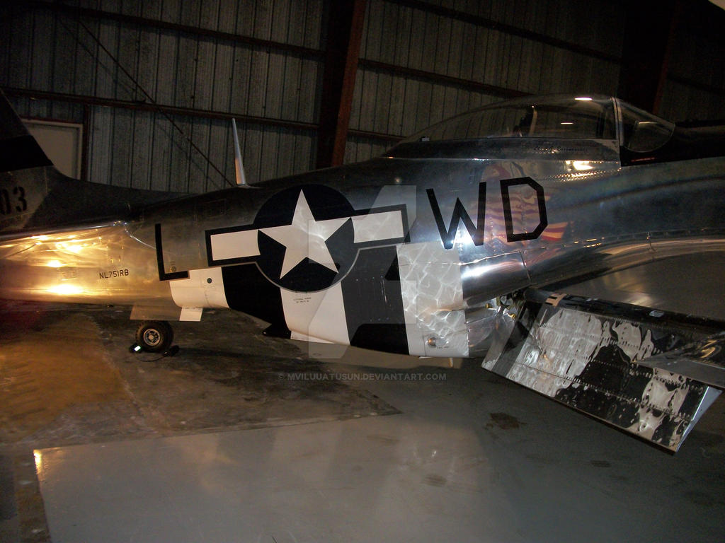 P-51D Fuselage by drivernjax