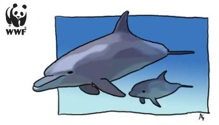 WWF - Dolphins by OmbroParanojo