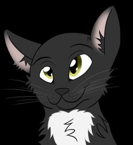AberrantFatCat's Profile Picture