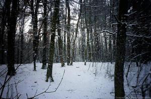 snow o..o by ksiazeAikka