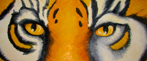 Tiger Eyes by KRSdeviations