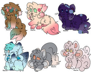 Kittydog Adopts 1