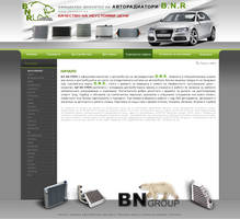 BNgroup web design by sea-weed