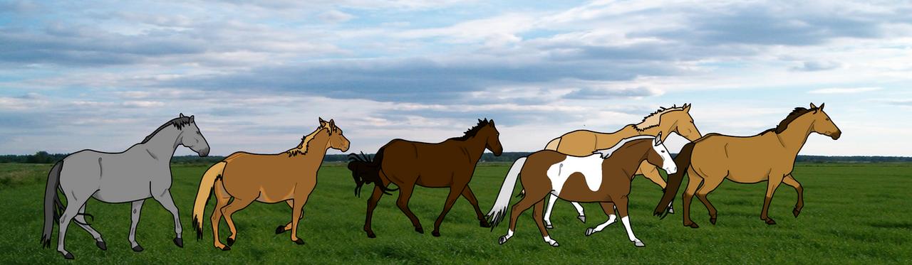 Spirit's Herd by sparkpaw
