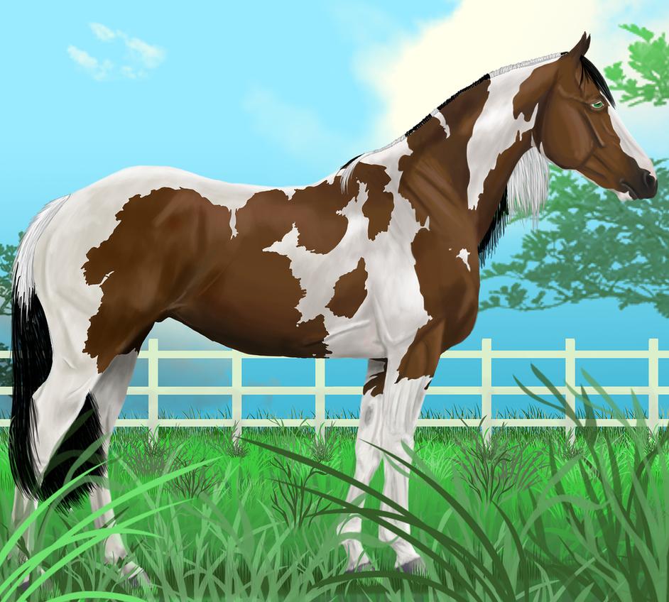 Tobiano Stallion by sparkpaw