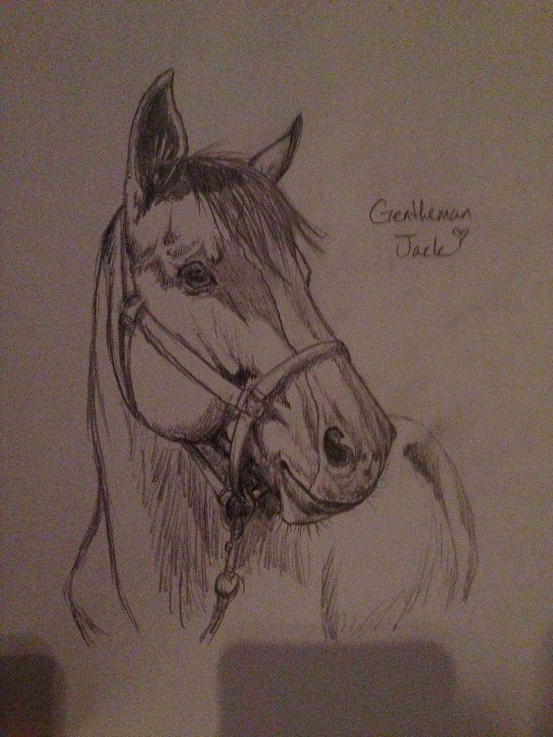 Gentleman Jack Sketch by sparkpaw