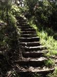 Sunday walk - Stairway