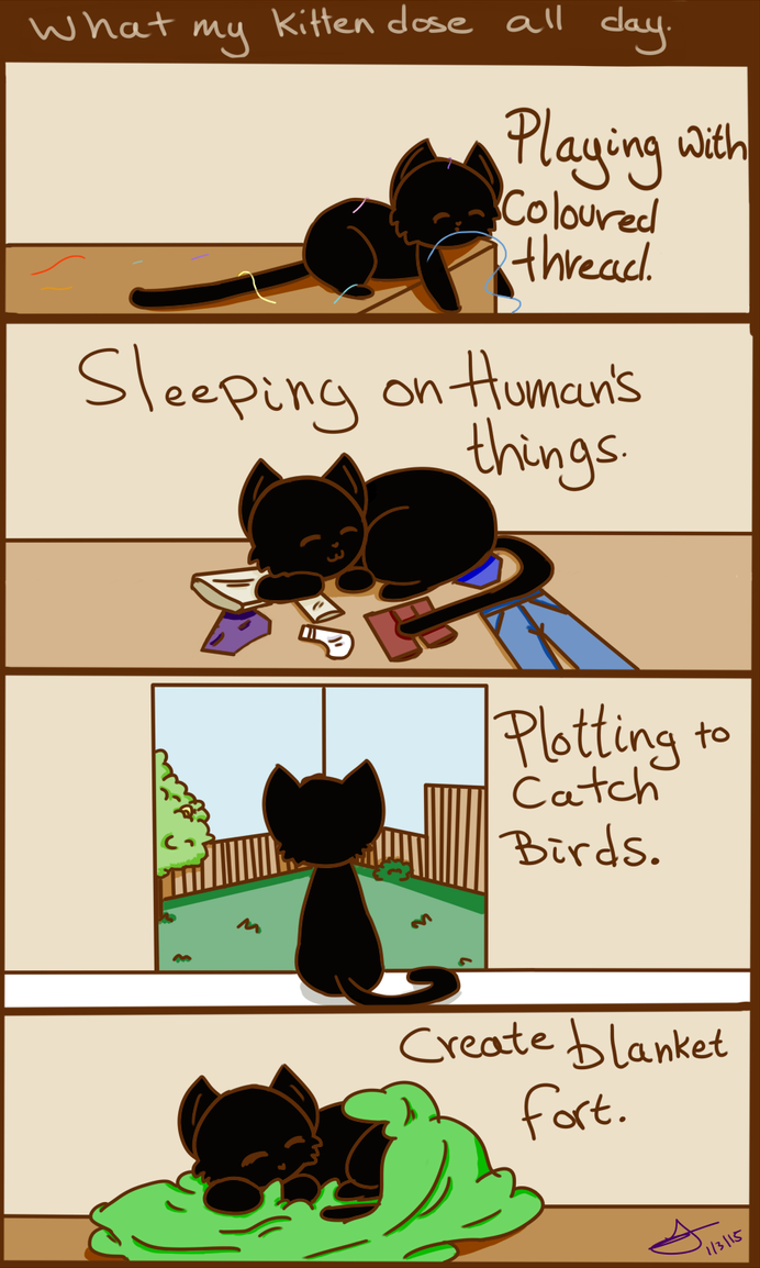 A kittens day. by Autumn-thefox