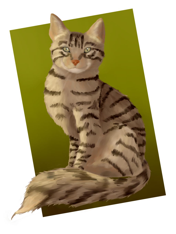 Cat speedpaint by AngelInTheHeart