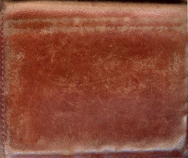 texture leather by luiexs