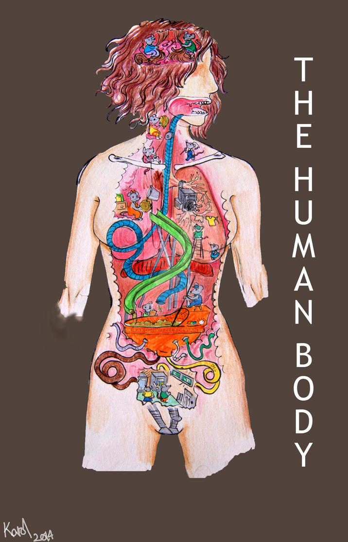 The human body by KiKaKoShnitzel3