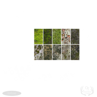 FeralHeart Texture: Moss Collection by TwoGuessWho