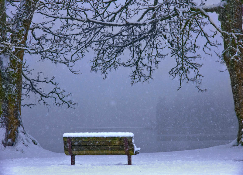 Snow is Falling... by Violet-Kleinert