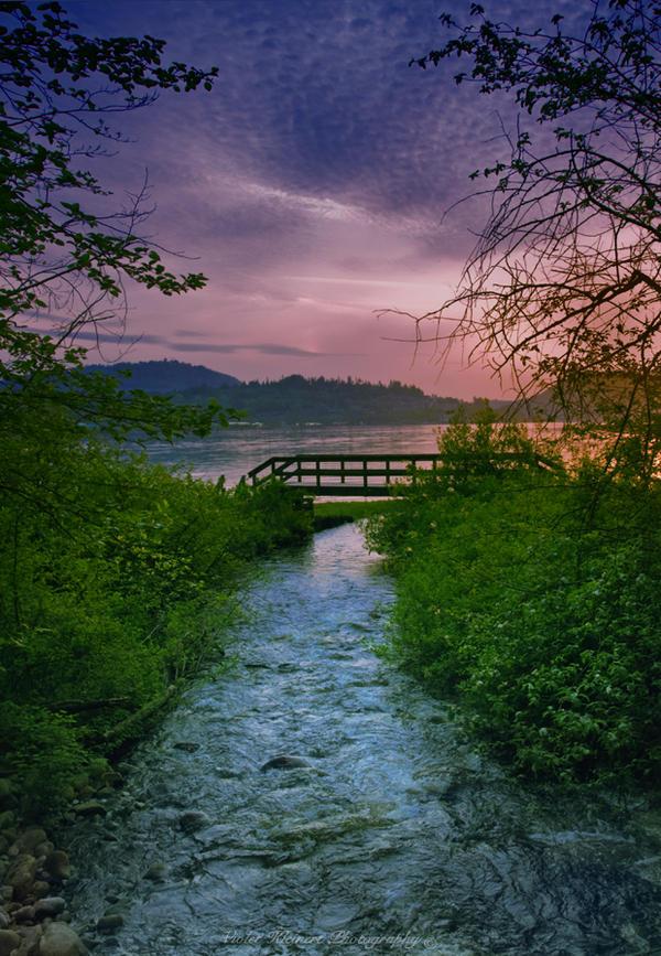 Spring Sunset by Violet-Kleinert