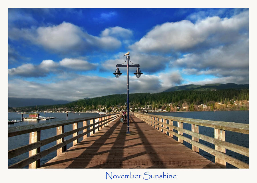 November Sunshine by Violet-Kleinert
