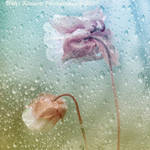 Rainy Day Fun by Violet-Kleinert