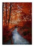 Autumn Melody