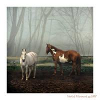 Friends by Violet-Kleinert