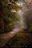 The Path by Violet-Kleinert