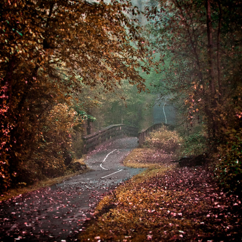 The Path 2 by Violet-Kleinert