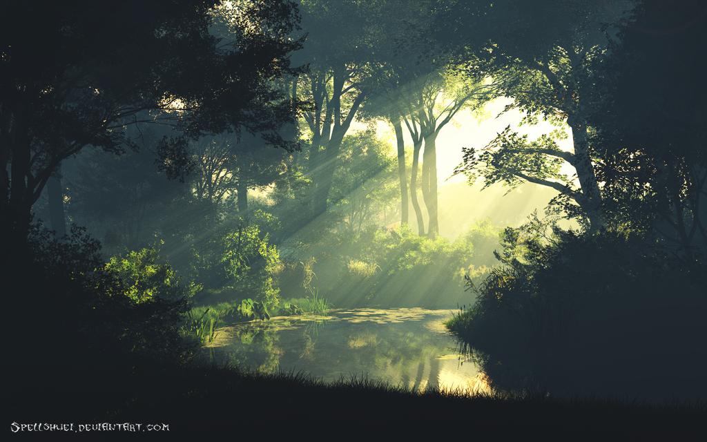 Misty Brook by Spellshuei