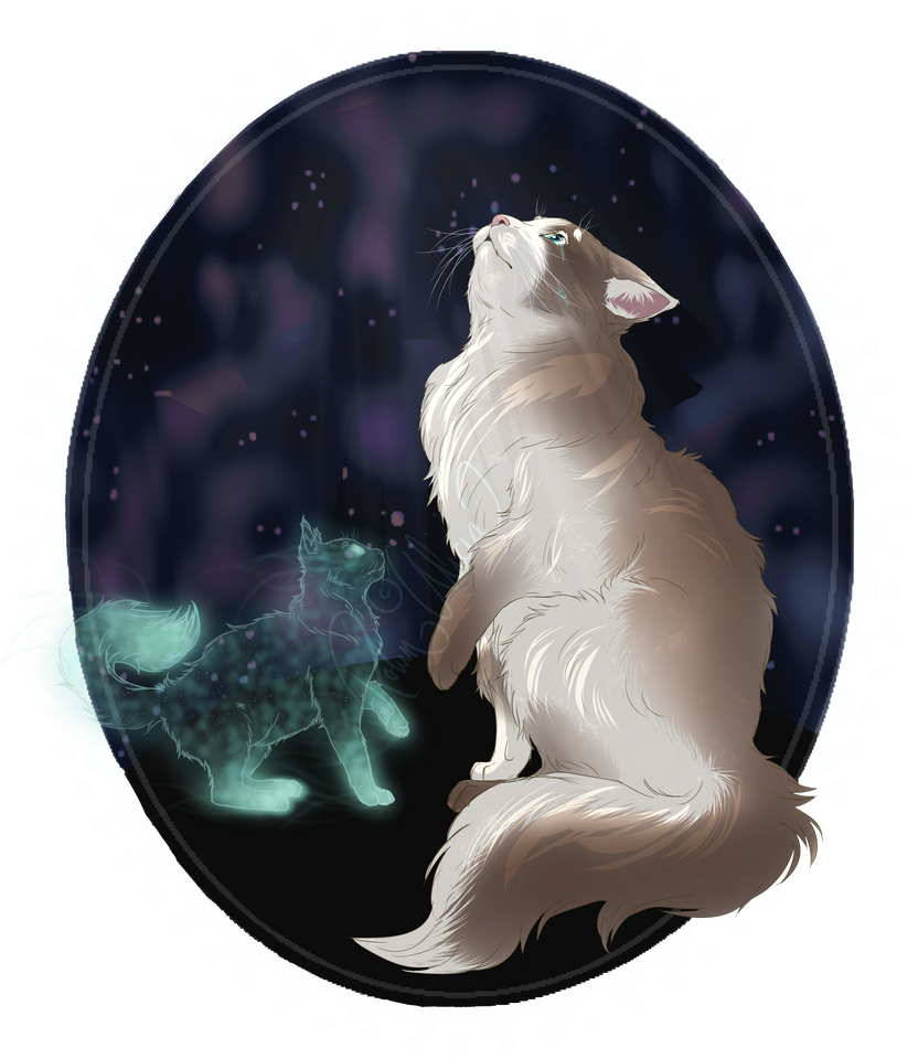 Stars by SpringBirdy
