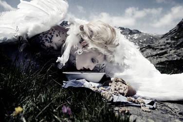 Pegasus by Annie-Bertram