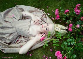Queen of Roses by Annie-Bertram