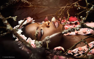 La Mort du printemps by Annie-Bertram