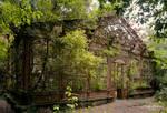 The steampunk winter garden