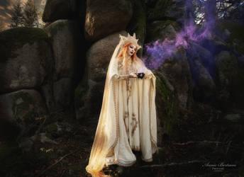 Black Forest Fairytale II