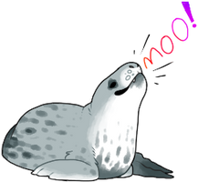 I love Leopard seals by Deceptiicon