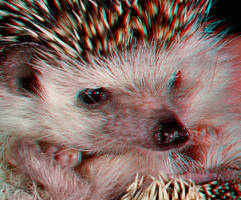 Spike
