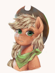 Applejack  by riukime