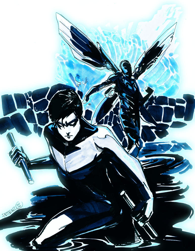 nightwing an blue bettle con by Peter-v-Nguyen on DeviantArt