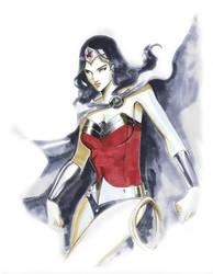 Wonder Woman Copics by Peter-v-Nguyen