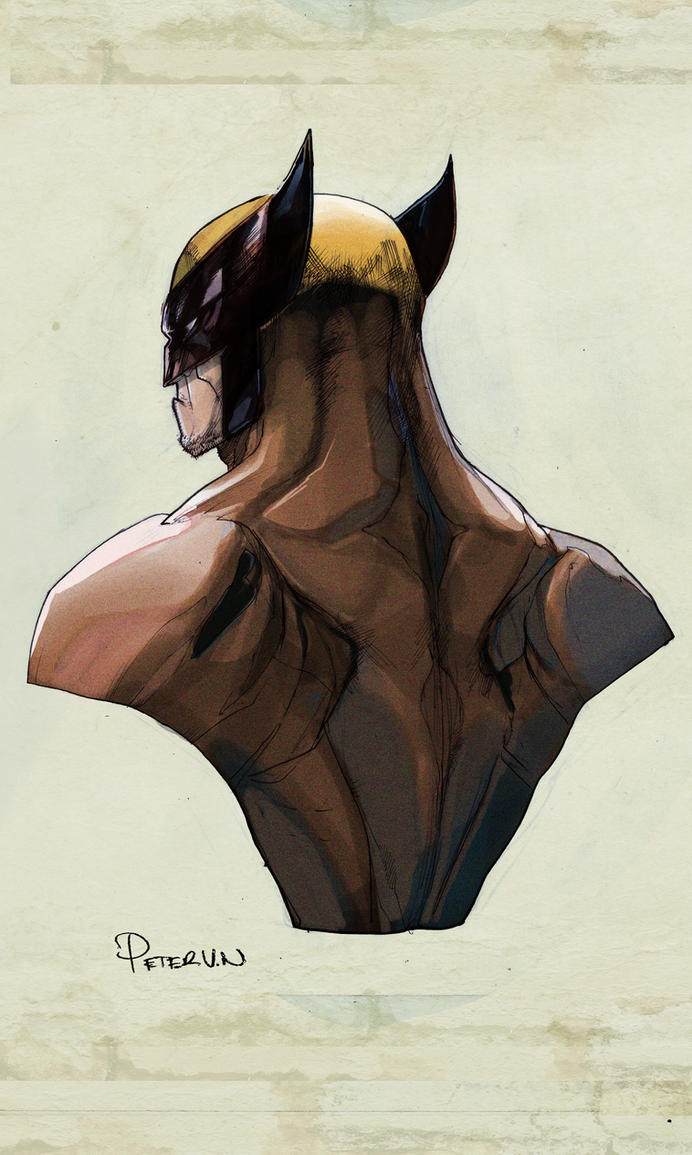 Wolverine by Peter-v-Nguyen