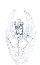high flying angel