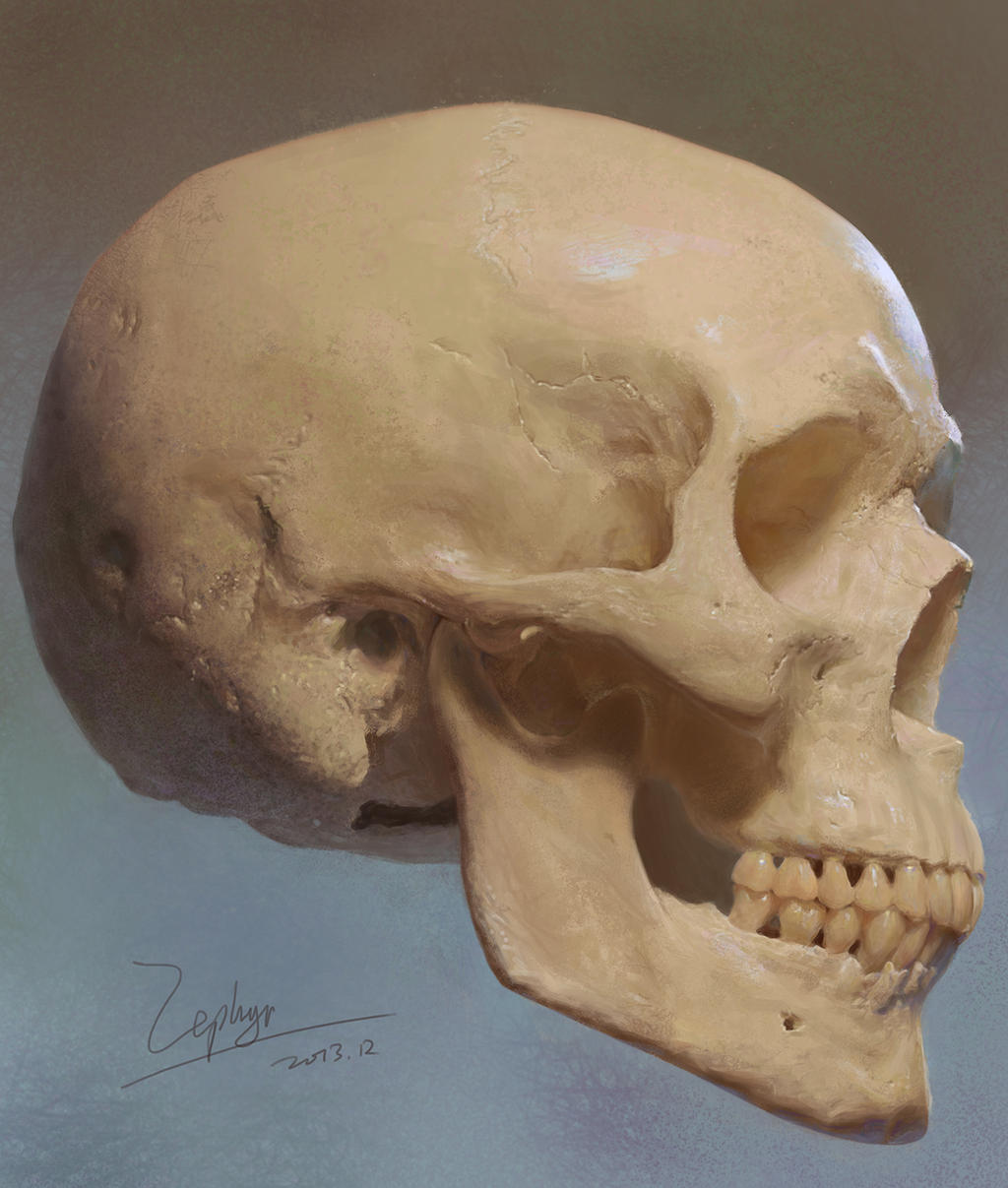 Skulls by zephyr0713