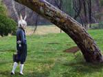Follow Me, Alice