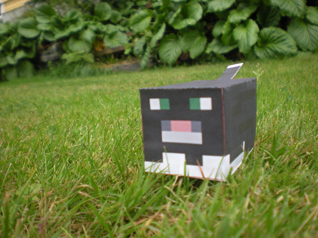 Minecraft Papercraft Cats Minecraft Papercraft Tuxedo