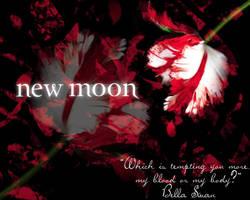 New Moon by Miztiry