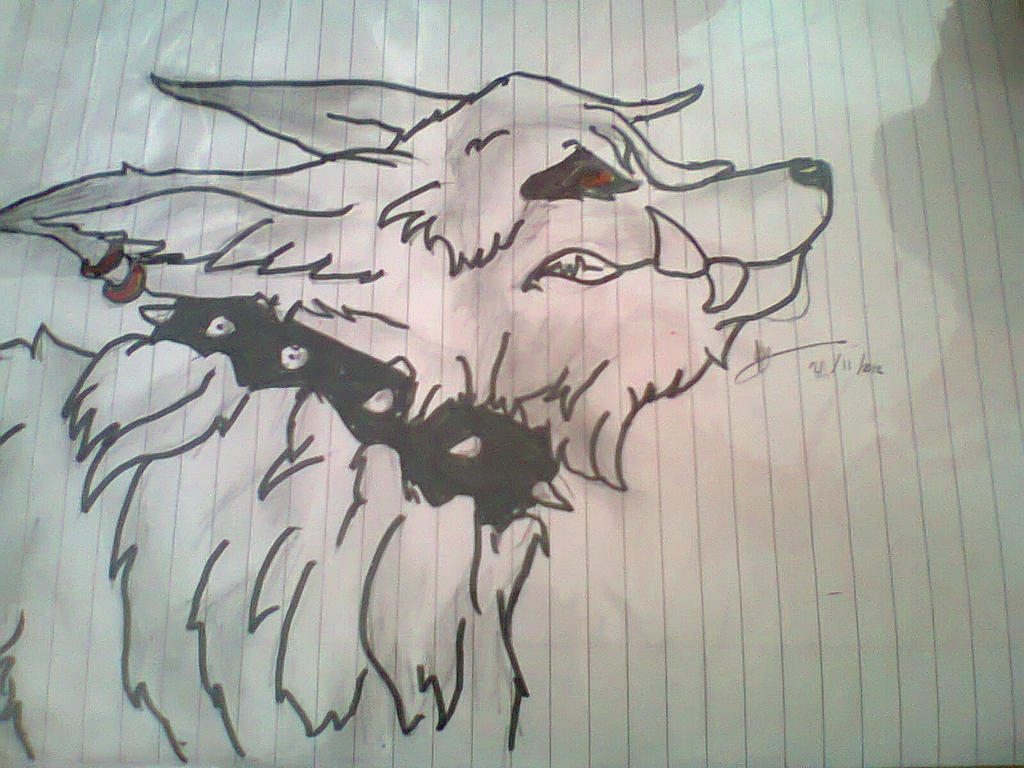 Angry Anime Wolf | www.imgkid.com - The Image Kid Has It!