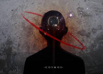 The Cosmos by slyvanie