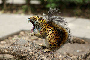mr jaguar squirrel by oatsie77