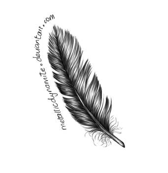 Feather by MetallicDynamite