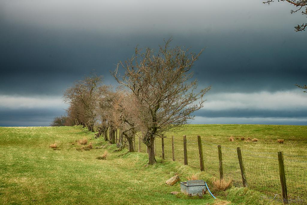 Countryside by StineJ