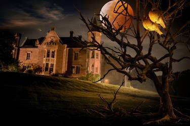 Mystical May Night