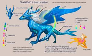 Locatl sheet by Locatlbranch