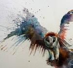 Barn owl in flight watercolour